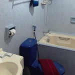 H2SC Cartoon - Bathroom